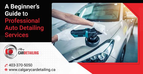 car auto detailing service